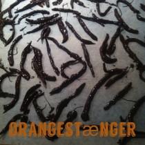 orangestænger cover