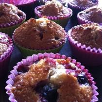 bagte solbær muffins